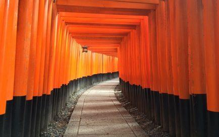 荘厳な神社の道