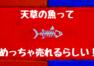 天草の魚はめっちゃ売れる!